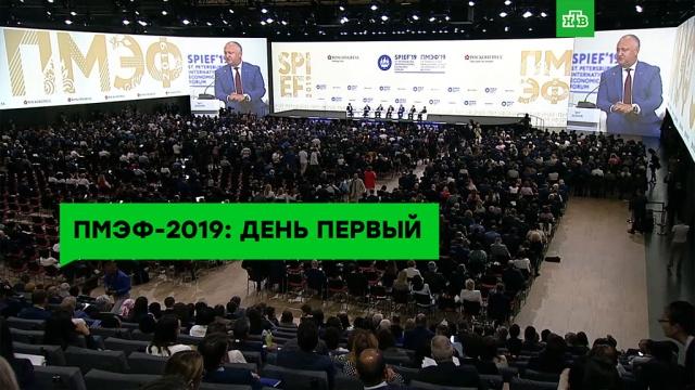 ПМЭФ-2019: день первый.ЗаМинуту, ПМЭФ, экономика и бизнес.НТВ.Ru: новости, видео, программы телеканала НТВ
