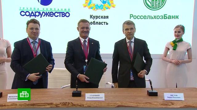 Второй день ПМЭФ: ключевые контракты.банки, ПМЭФ, РЖД, экономика и бизнес.НТВ.Ru: новости, видео, программы телеканала НТВ