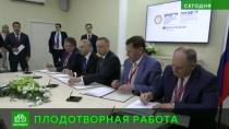 Триллионные возможности: Петербург иЛенобласть подвели итоги <nobr>ПМЭФ-2019</nobr>