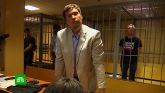 Путину доложили оделе журналиста Голунова