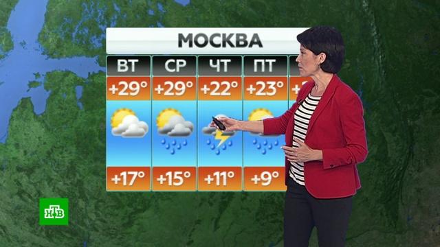 Прогноз погоды на 11 июня.лето, погода, прогноз погоды.НТВ.Ru: новости, видео, программы телеканала НТВ