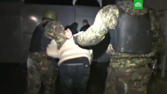«Народная» 228-я: это должен знать каждый.аресты, задержание, наркотики и наркомания, НТВ, суды.НТВ.Ru: новости, видео, программы телеканала НТВ