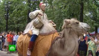 Караван верблюдов прошелся по центру Москвы