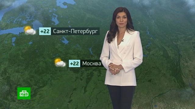 Утренний прогноз погоды на 13 июня.лето, погода, прогноз погоды.НТВ.Ru: новости, видео, программы телеканала НТВ