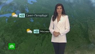 Утренний прогноз погоды на 13 июня