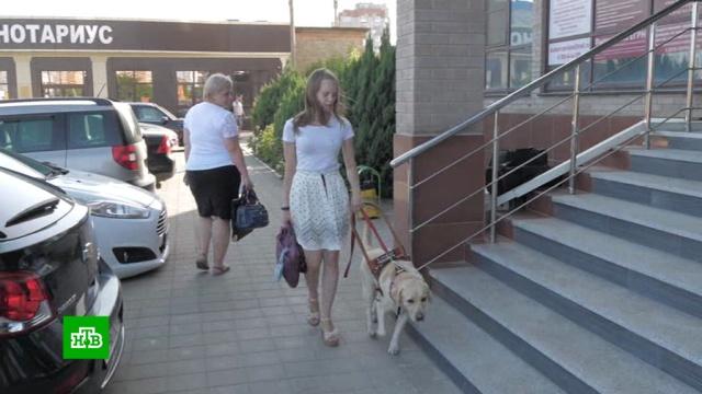 Девушка-инвалид в суде отстаивает право работать с собакой-поводырем.инвалиды, Краснодар, слепые, собаки, суды, скандалы.НТВ.Ru: новости, видео, программы телеканала НТВ