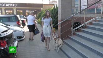 Девушка-инвалид в суде отстаивает право работать с собакой-поводырем