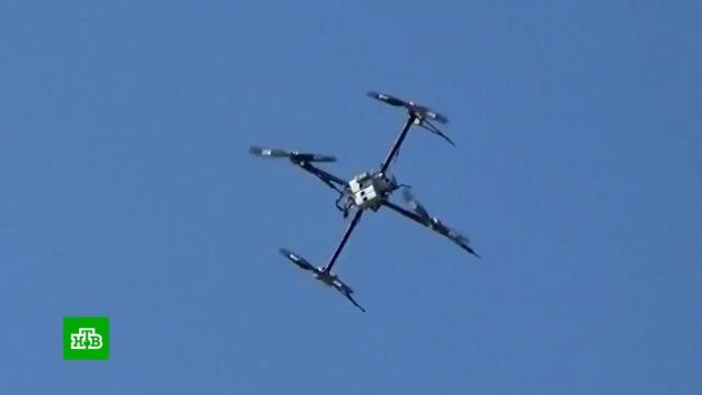 ВЯпонии запретили управлять дронами внетрезвом состоянии.Япония, беспилотники.НТВ.Ru: новости, видео, программы телеканала НТВ