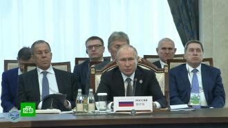 Путин назвал борьбу с терроризмом одним из приоритетов ШОС