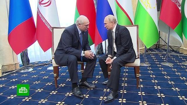 Путин провел краткую встречу сЛукашенко на полях ШОС.Киргизия, Путин, ШОС.НТВ.Ru: новости, видео, программы телеканала НТВ