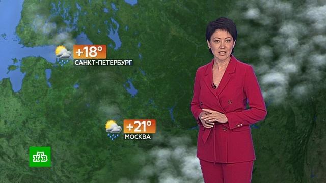 Прогноз погоды на 15 июня.лето, погода, прогноз погоды.НТВ.Ru: новости, видео, программы телеканала НТВ