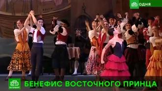 Зрители Мариинского театра увидели прыжок Азиатской пантеры