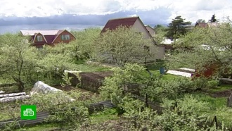 Уроссиян предлагают изымать землю за пал травы имусор