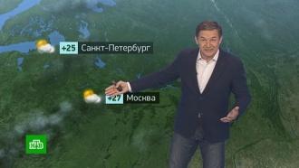Утренний прогноз погоды на 19июня