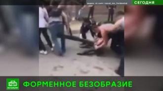 Выпускники <nobr>Военно-медицинской</nobr> академии оскандалились после пьяных гуляний