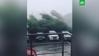 Мощный ураган с ливнем обрушился на Ульяновскую область
