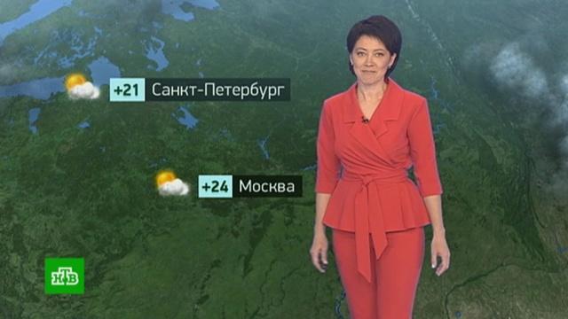 Утренний прогноз погоды на 25июня.Москва, Санкт-Петербург, погода, прогноз погоды.НТВ.Ru: новости, видео, программы телеканала НТВ