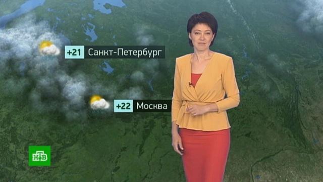 Утренний прогноз погоды на 26июня.Москва, Санкт-Петербург, погода, прогноз погоды.НТВ.Ru: новости, видео, программы телеканала НТВ