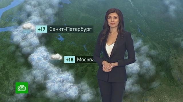 Утренний прогноз погоды на 27июня.Москва, Санкт-Петербург, погода, прогноз погоды.НТВ.Ru: новости, видео, программы телеканала НТВ