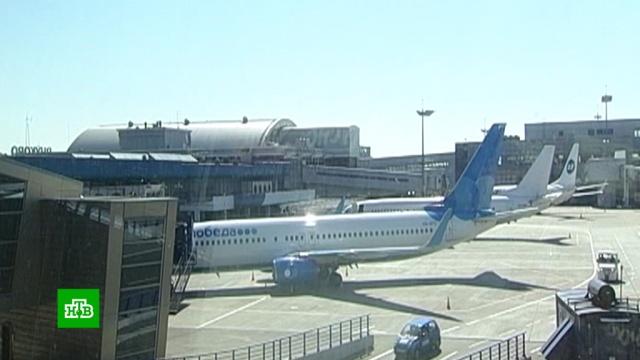 Минтранс РФ оценит потери авиакомпаний после остановки полетов в Грузию.Грузия, Минтранс РФ, авиакомпании, авиация, туризм и путешествия, экономика и бизнес.НТВ.Ru: новости, видео, программы телеканала НТВ