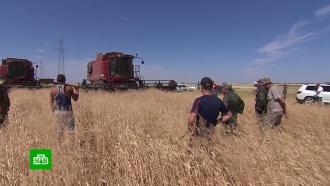 Волгоградские фермеры с вилами и лопатами встали на защиту своего урожая