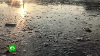 Число жертв наводнения вИркутской области возросло до 12