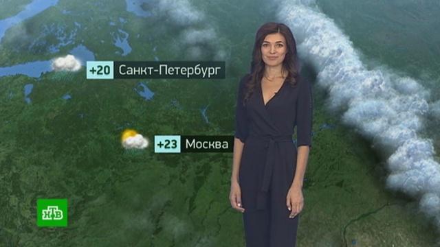 Утренний прогноз погоды на 2июля.Москва, Санкт-Петербург, погода, прогноз погоды.НТВ.Ru: новости, видео, программы телеканала НТВ
