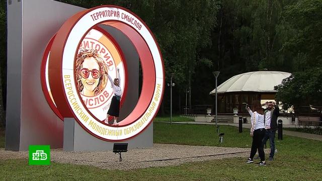Участники «Территории смыслов» начинают борьбу за гранты до 3 млн рублей.молодежь, образование, фестивали и конкурсы.НТВ.Ru: новости, видео, программы телеканала НТВ