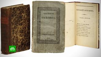 Первое издание «Евгения Онегина» продали за 580тысяч долларов