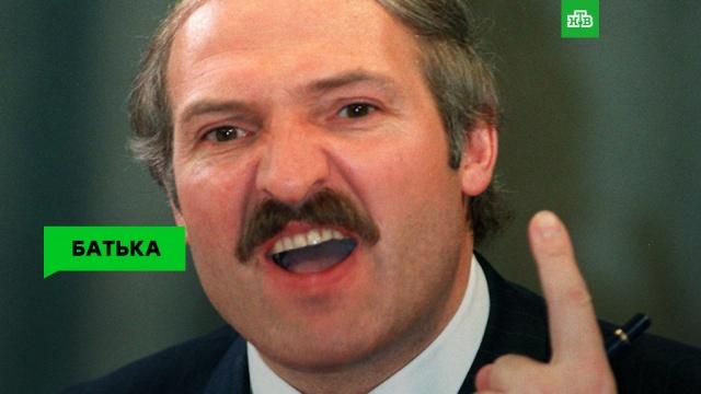 Батька Лукашенко: вечный президент иискрометный оратор.НТВ.Ru: новости, видео, программы телеканала НТВ