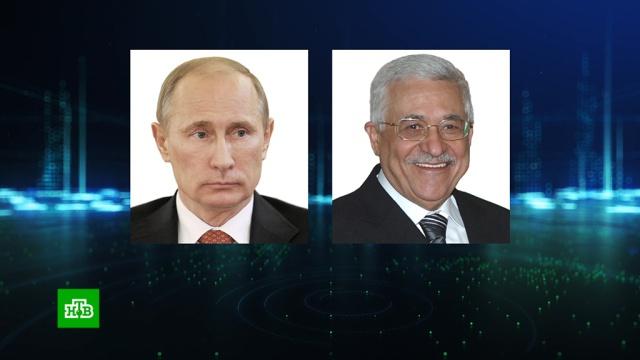 Путин обсудил с Аббасом ближневосточное урегулирование.Ближний Восток, Палестина, Путин.НТВ.Ru: новости, видео, программы телеканала НТВ