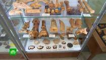 Ученые рассказали о сенсационных находках в крымской пещере «Таврида»