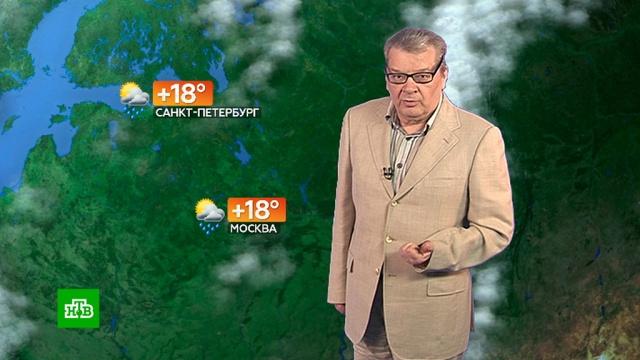 Прогноз погоды на 13 июля.лето, погода, прогноз погоды.НТВ.Ru: новости, видео, программы телеканала НТВ