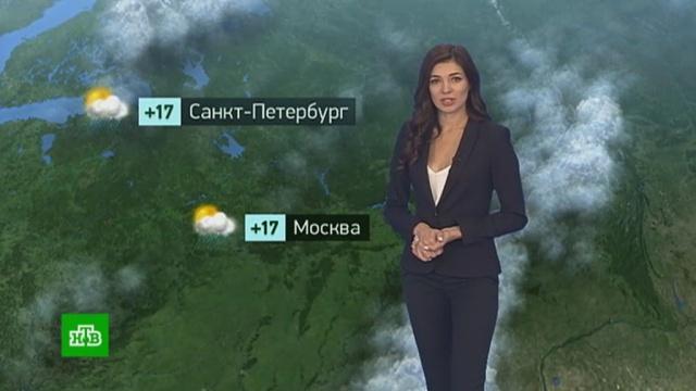 Утренний прогноз погоды на 12июля.лето, погода, прогноз погоды.НТВ.Ru: новости, видео, программы телеканала НТВ