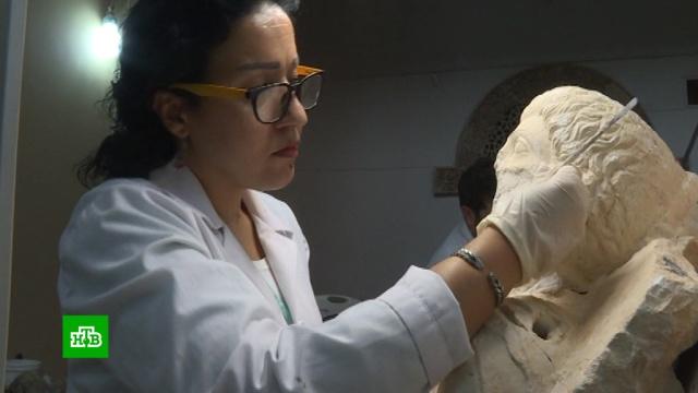 ВНациональном музее Дамаска начали восстанавливать скульптуры из Пальмиры.Дамаск, Сирия, войны и вооруженные конфликты, реконструкция и реставрация.НТВ.Ru: новости, видео, программы телеканала НТВ
