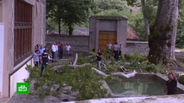 Четверых пострадавших при падении ветки чинары вШеки отправили вБаку.Азербайджан, несчастные случаи.НТВ.Ru: новости, видео, программы телеканала НТВ