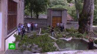 Четверых пострадавших при падении ветки чинары вШеки отправили вБаку