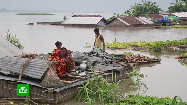 В Индии под воду ушли три тысячи деревень.Индия, наводнения.НТВ.Ru: новости, видео, программы телеканала НТВ