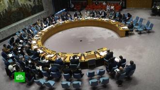 ВСовбезе ООН обсудили украинский закон оязыке