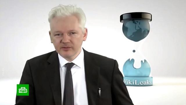 СМИ: Ассанж управлял вмешательством ввыборы вСША.WikiLeaks, Ассанж, США, выборы.НТВ.Ru: новости, видео, программы телеканала НТВ