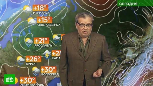 Прогноз погоды на 20 июля.лето, погода, прогноз погоды.НТВ.Ru: новости, видео, программы телеканала НТВ