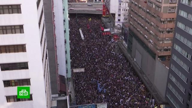 Протестующие в Гонконге забросали яйцами канцелярию китайских властей.Гонконг, Китай, митинги и протесты.НТВ.Ru: новости, видео, программы телеканала НТВ