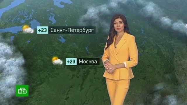 Утренний прогноз погоды на 22июля.Москва, Санкт-Петербург, погода, прогноз погоды.НТВ.Ru: новости, видео, программы телеканала НТВ