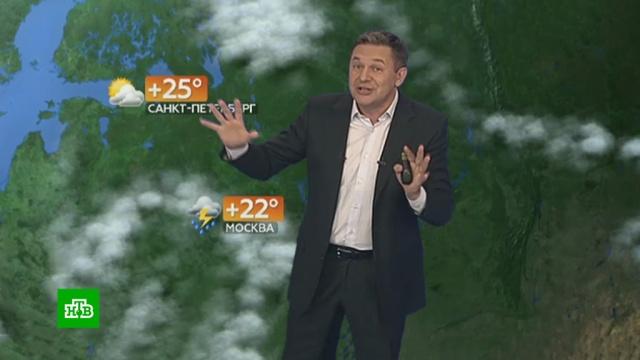 Прогноз погоды на 23июля.лето, погода, прогноз погоды.НТВ.Ru: новости, видео, программы телеканала НТВ