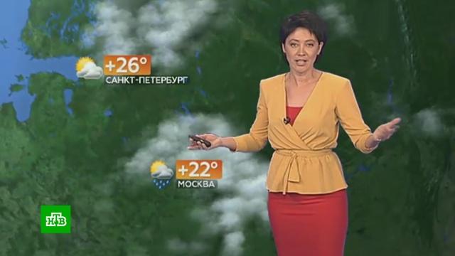 Прогноз погоды на 24 июля.лето, погода, прогноз погоды.НТВ.Ru: новости, видео, программы телеканала НТВ