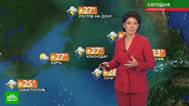 Прогноз погоды на 25 июля.лето, погода, прогноз погоды.НТВ.Ru: новости, видео, программы телеканала НТВ