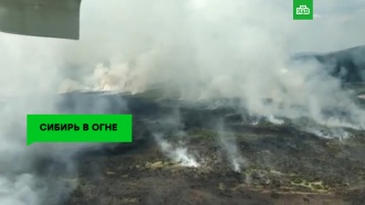 Сибирь вогне: горит больше миллиона гектаров тайги