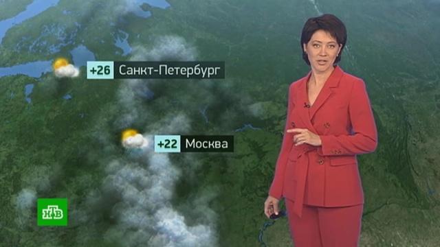 Утренний прогноз погоды на 24 июля.Москва, Санкт-Петербург, погода, прогноз погоды.НТВ.Ru: новости, видео, программы телеканала НТВ