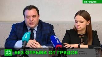 Петербургские дачники смогут выбрать губернатора без отрыва от грядок