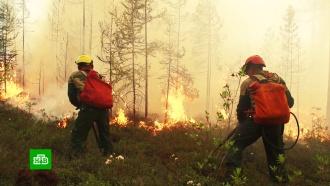 Пережившую мощный паводок Иркутскую область охватили сильнейшие лесные пожары